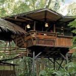 The Treehouse, Costa Rica Treehouse Lodge